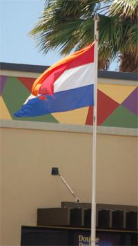 Nethflag