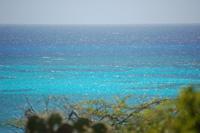 Rogers_beach